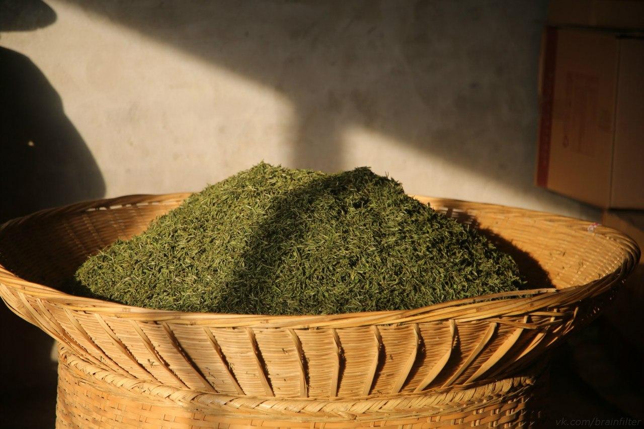 производство чая Мойчай.ру